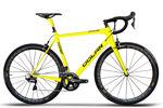 Tuono-SL-Yellow-Black.jpg